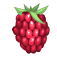 :rfj_fruitRaspberry_1: